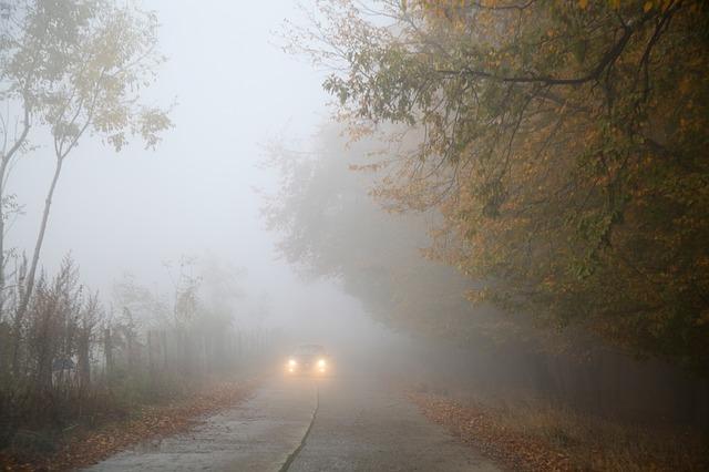 So lenkt man sein Auto im Herbst