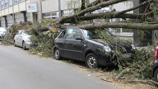 Wer bei Sturmschäden am Fahrzeug haftet